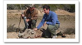 Professional Hunting